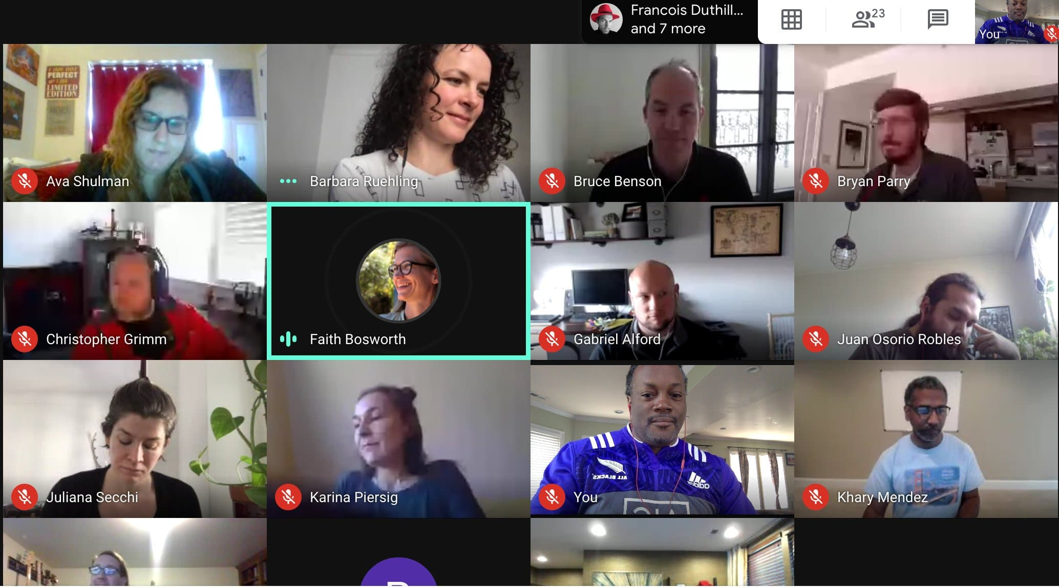 grid of zoom conference during Virtual Book Sprint
